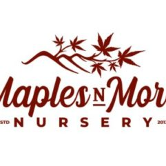 Logo of Maples N More Nursery