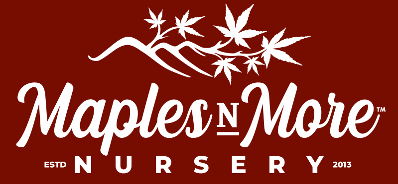 Maples N More Nursery